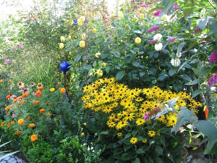 Pflanzung - Blumen gelb