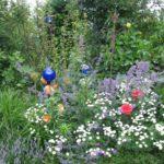Pflanzung - weisse Blumen